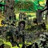 Cover of the album Origin of Extinction