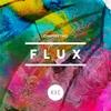 Couverture de l'album Chapter Two: Flux - EP