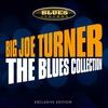 Couverture de l'album The Blues Collection (Live)