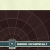 Couverture de l'album Lost Floppies, Volume 2