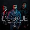 Cover of the album Degaje