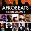 Couverture de l'album Afrobeats the Hits, Vol. 1