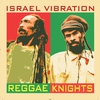 Couverture de l'album Reggae Knights