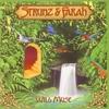 Cover of the album Wild Muse