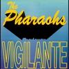 Couverture de l'album Vigilante