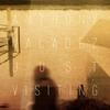 Couverture de l'album Just Visiting
