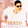 Cover of the album Waterbed Hev