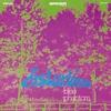 Couverture de l'album Distortions