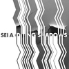 Cover of the album Editing Shadows