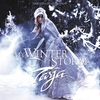 Couverture de l'album My Winter Storm (Bonus Track Version)