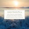 Couverture de l'album Ambient Sleeping Pill 4