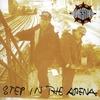 Couverture de l'album Step in the Arena