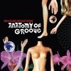 Couverture de l'album Anatomy of Groove