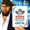 Couverture de l'album Bullets In the Gun (Deluxe Edition)