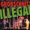 Couverture de l'album Grobschnitt Story, Vol. 4 (Live, Grugahalle Essen 08.05.1981)