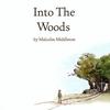 Couverture de l'album Into the Woods