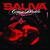 Couverture de l'album Cinco Diablo