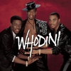 Couverture de l'album Funky Beat: The Best of Whodini