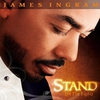 Cover of the album Stand (In the Light)
