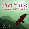 Couverture de l'album Instrumental Worldhits - Volume 3