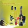 Couverture de l'album Re*Shaken: The Remix Album Project