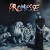 Cover of the album Promesse