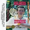 Couverture de l'album Pustite Me Da Tugujem (Serbian Music)