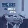 Couverture de l'album Handful of Soul