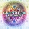 Cover of the album Soul Shaker