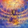Couverture de l'album Buddha-Bar Classical, Zenfonia