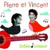 Cover of the album Drôles d'oiseaux