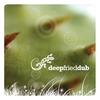 Couverture de l'album Deep Fried Dub