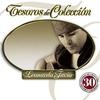 Cover of the album Tesoros de Colección: Leonardo Favio