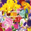 Cover of the album Wankelmoods, Vol. 1 (Mixed By Wankelmut)