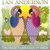 Couverture de l'album The Secret Language of Birds