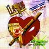 Cover of the album 20 Cumbias Andinas
