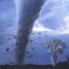 Couverture de l'album Storm