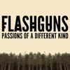 Couverture de l'album Passions of a Different Kind