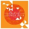 Couverture de l'album Best Of Lounge 2013