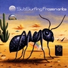 Couverture de l'album Frozen Ants
