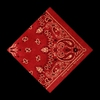 Cover of the album Red Bandana