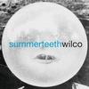 Couverture de l'album Summerteeth