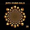 Couverture de l'album Pure Gold