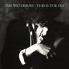 Couverture de l'album This Is the Sea