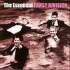 Couverture de l'album The Essential Pansy Division