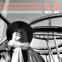 Cover of the track Wande