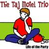 Couverture de l'album Life of the Party