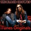 Cover of the album iTunes Originals: The Black Crowes
