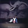 Couverture de l'album Direct Step