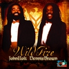 Cover of the album Wild Fire